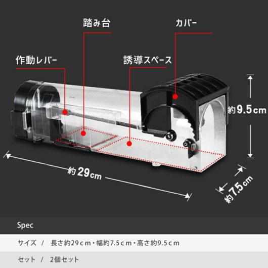 Ninonly amazon.co.jp